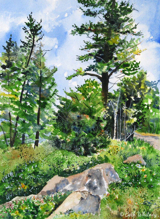 Schoodic Overlook, an original Maine watercolor painting by Beth Whitney