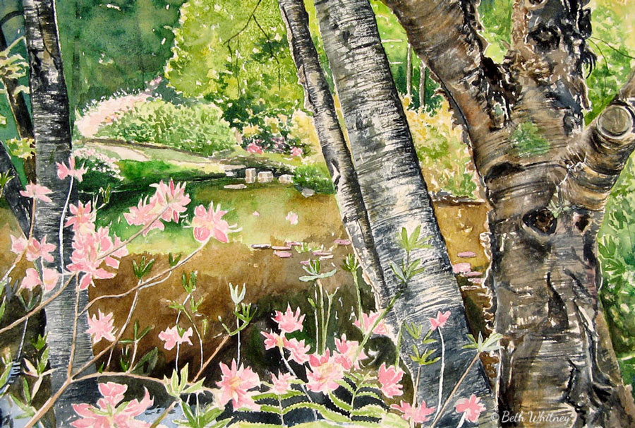 """Azalea Garden in Spring,"" Asticou Azalea Garden, original painting by Beth Whitney 