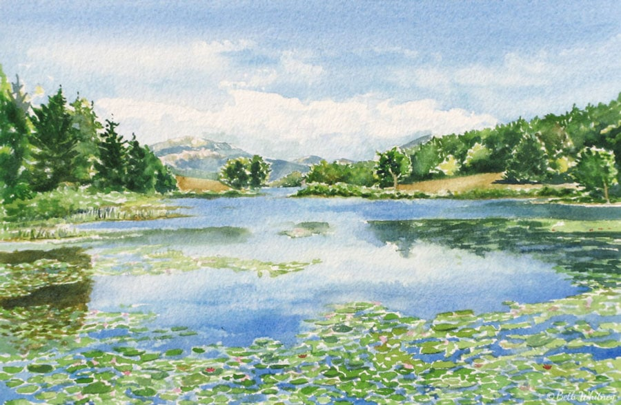 Painting by Beth Whitney of Little Long Pond in summer with waterlilies | DowneastWatercolors.com