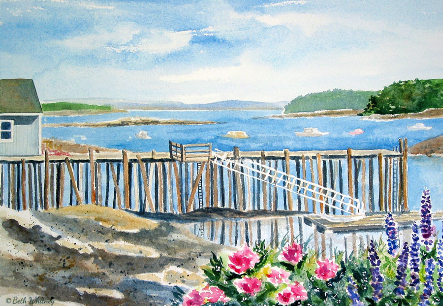 Roses & Lupine, Port Clyde, an original Maine watercolor painting by Beth Whitney