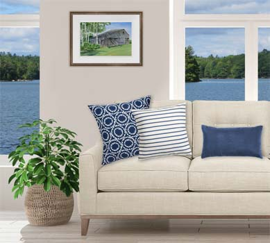 Birch Trees painting displayed over a couch