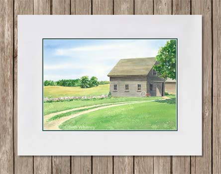 Painting of weathered barn and golden field with summer phlox flowers by Beth Whitney