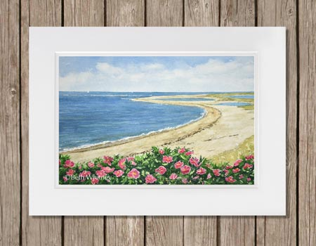 Watercolor painting of pink roses at Lighthouse Beach in Chatham, MA on Cape Cod. Beth Whitney | DowneastWatercolors.com