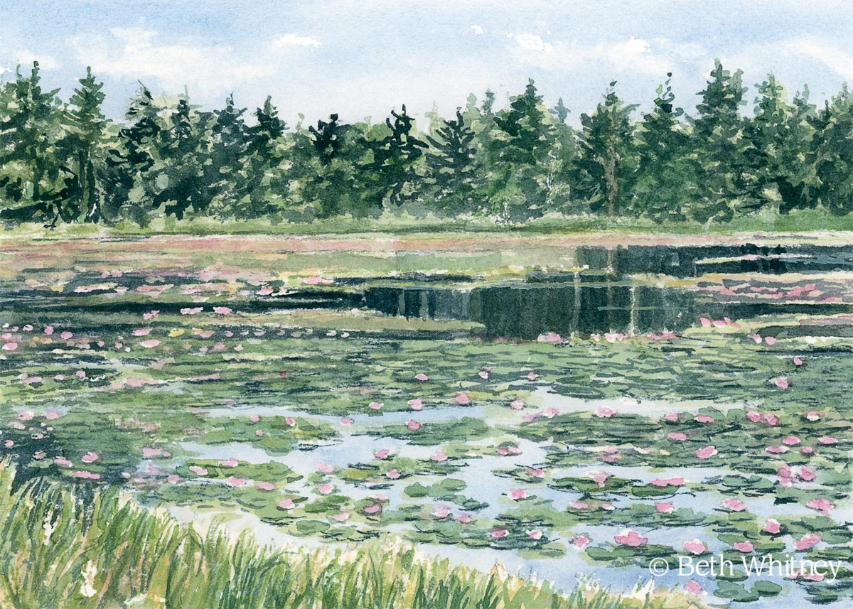 Watercolor painting of Ames Pond in Stonington, Maine by artist Beth Whitney | Downeast Watercolors