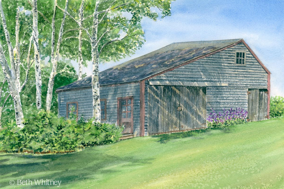 """""""Birches,"""" weathered barn landscape painting by Beth Whitney   DowneastWatercolors.com"""