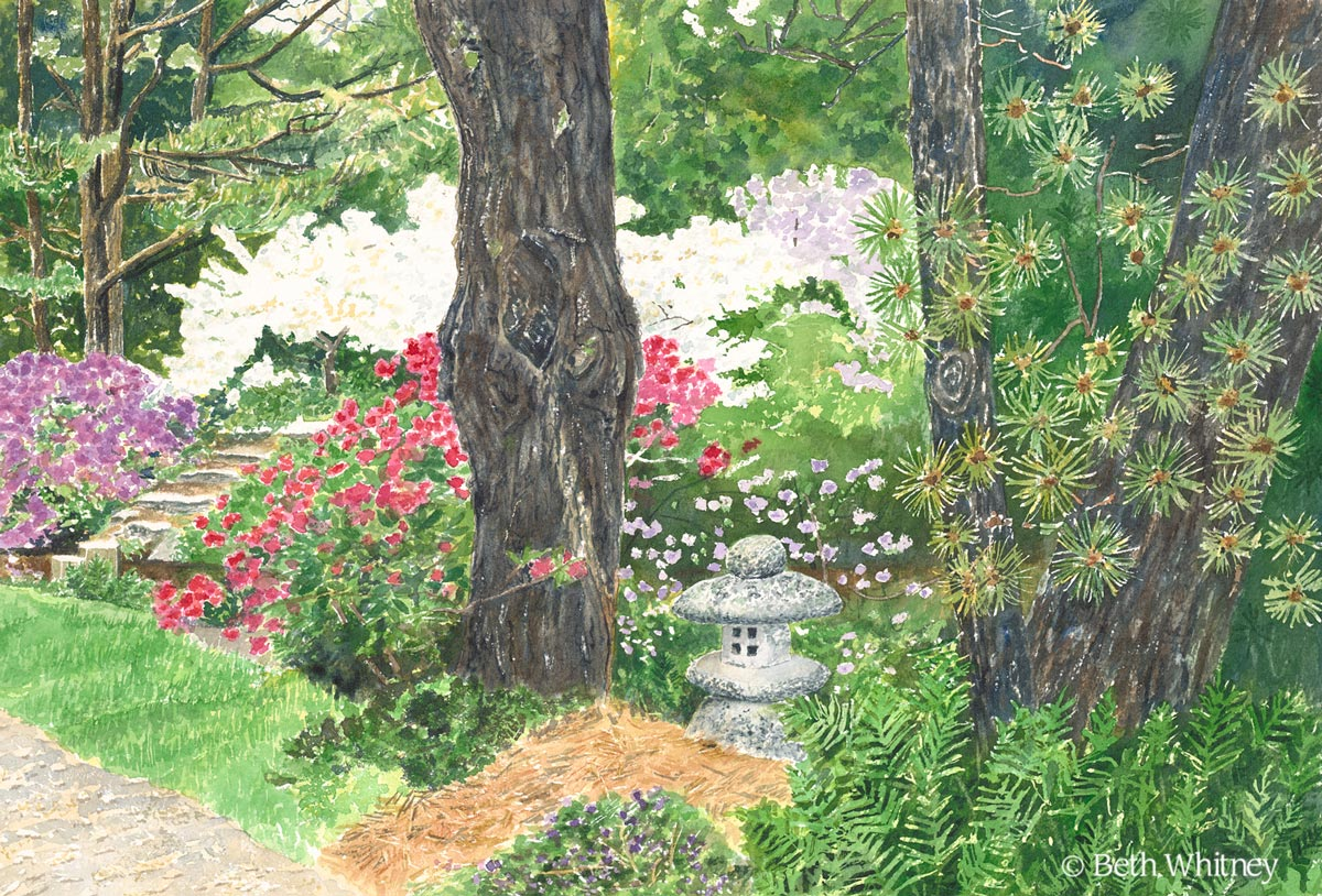 Painting of a Japanese Lantern nestled among rhododendrons, ferns, and pine trees.  Painting by Beth Whitney | DowneastWatercolors.com