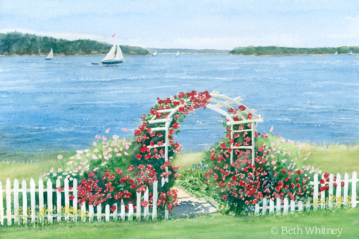 Original watercolor painting of a rose arbor on the sea, white picket fence, sailboats gliding by. | DowneastWatercolors.com