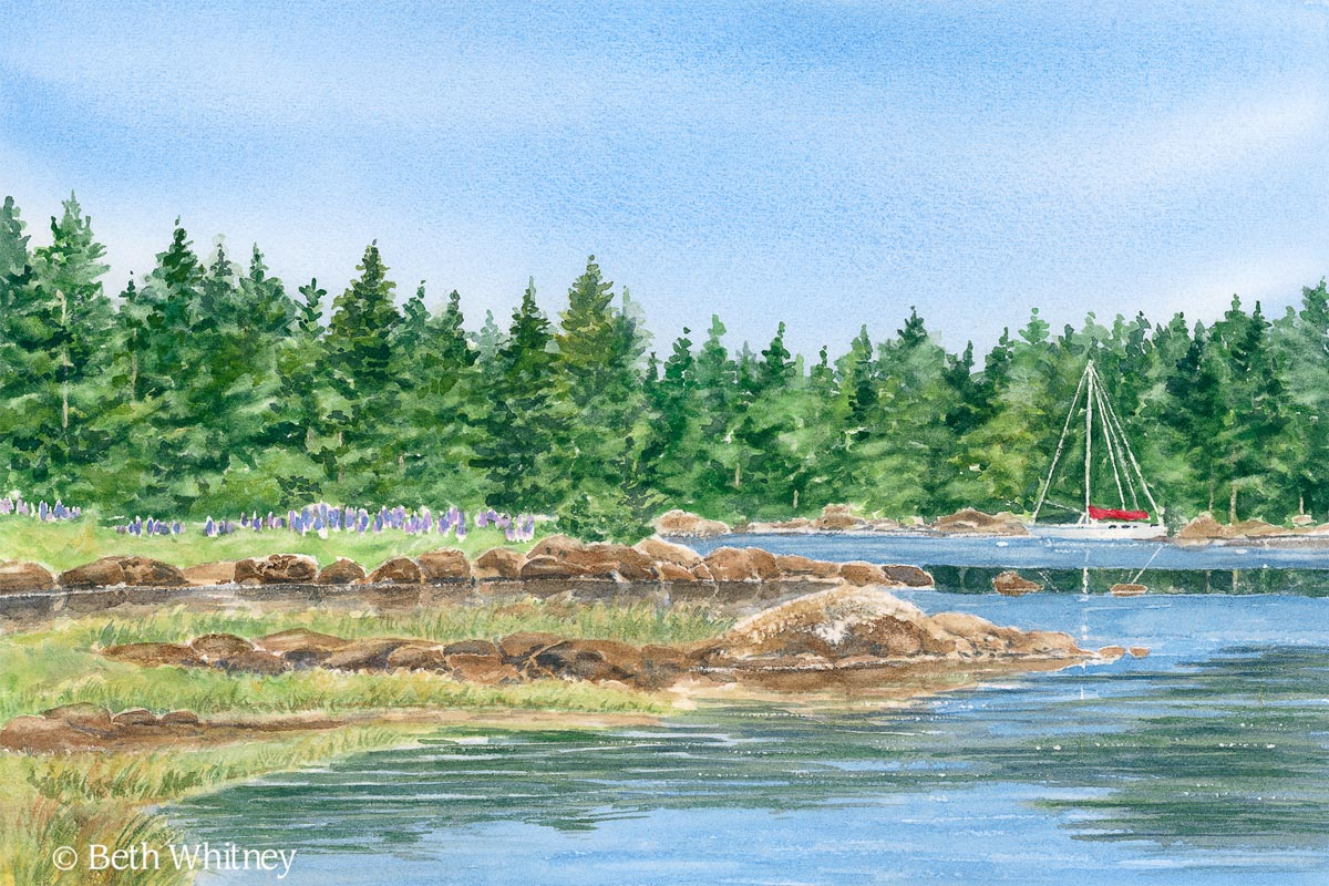 "Painting by Beth Whitney of a ""Sailboat in the Cove"" with lush trees and lupine in the background 