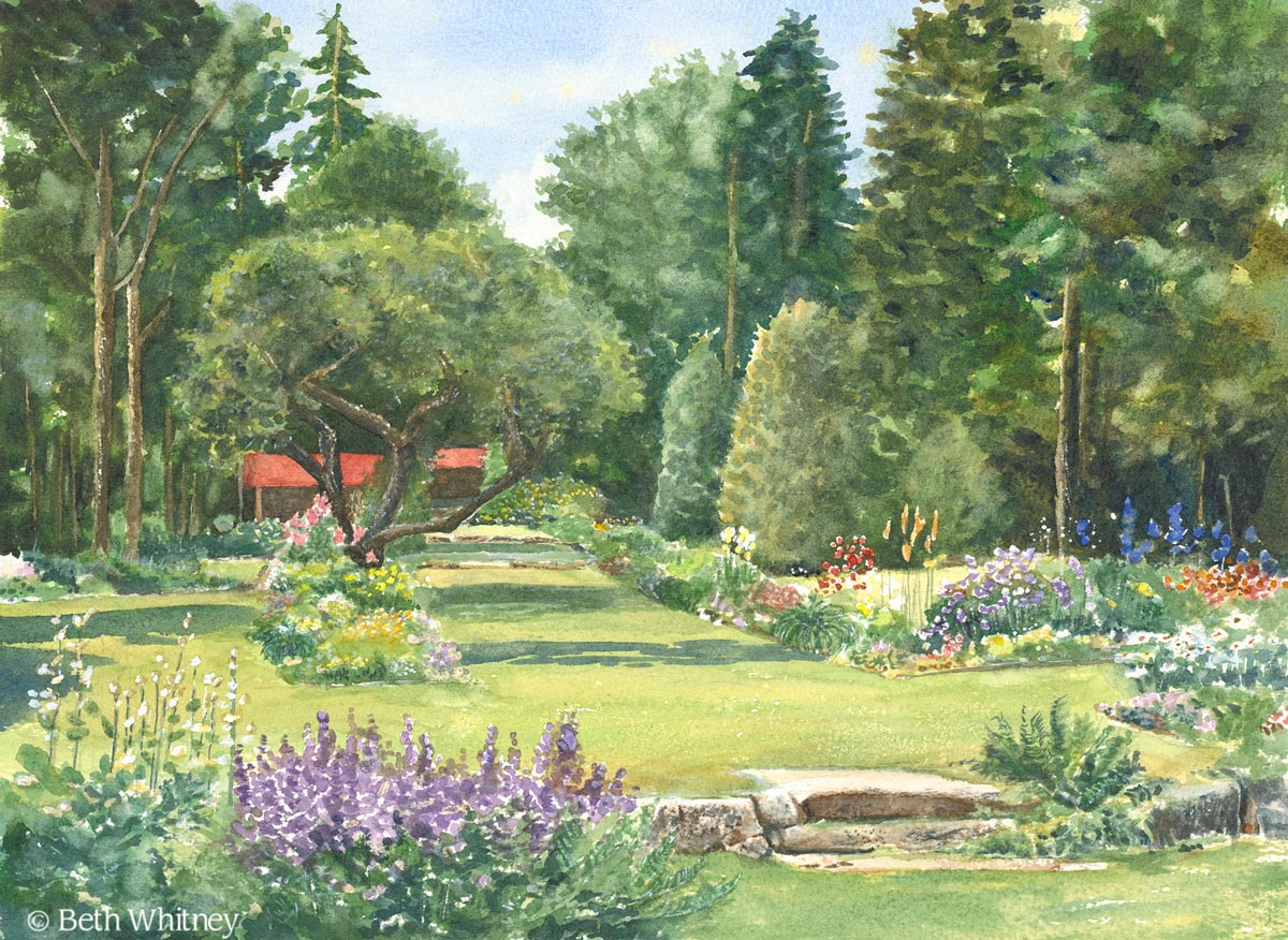 """""""Thuya Garden,"""" an original watercolor painting of a garden in Northeast Harbor, Maine by artist Beth Whitney 