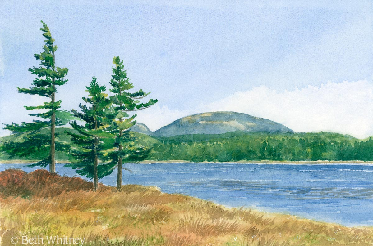 Painting of Witch Hole Pond in Acadia National Park in Maine by artist Beth Whitney | DowneastWatercolors.com