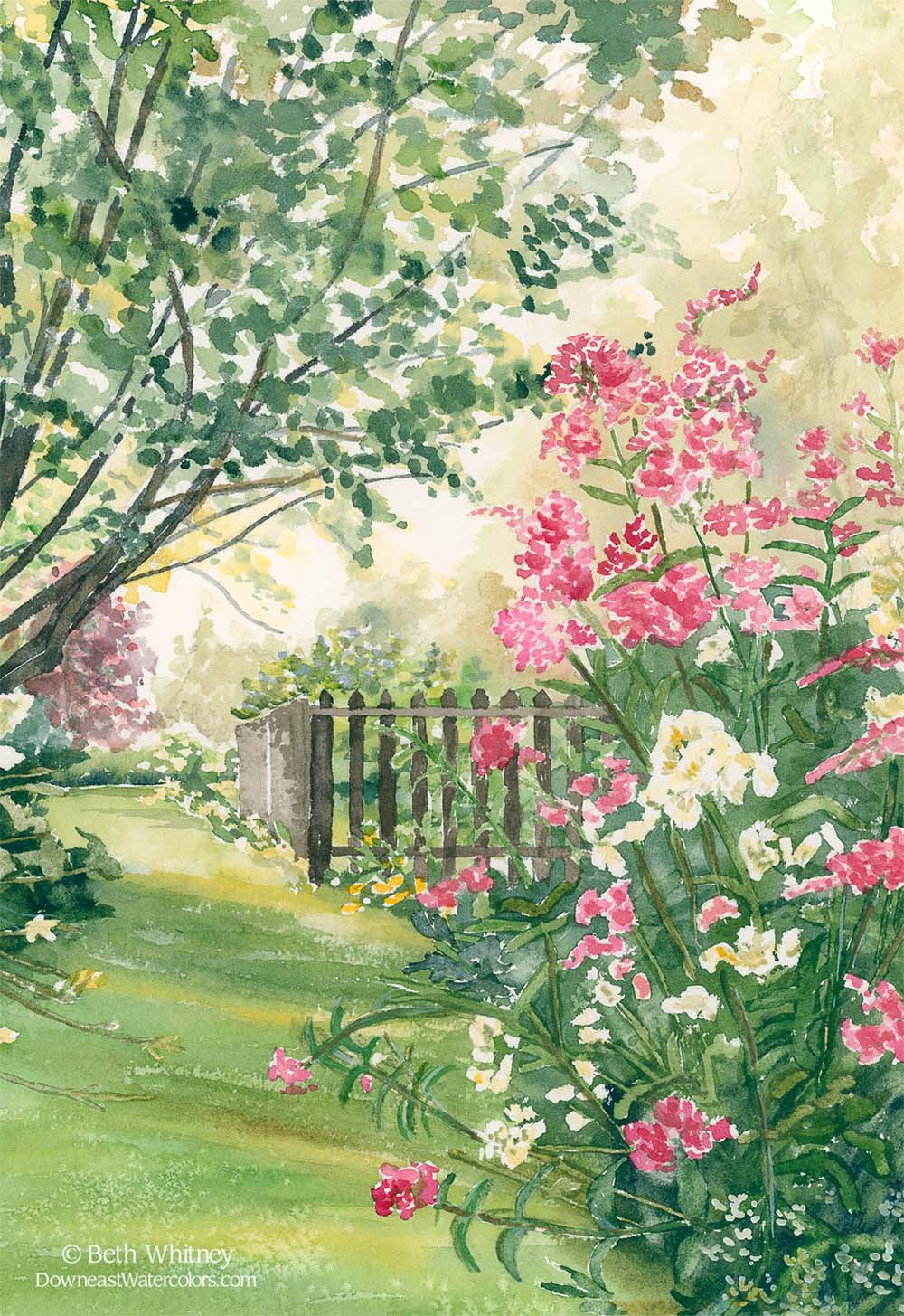 Misty Morning Sunshine, Painting of a Maine summer garden by artist Beth Whitney | DowneastWatercolors.com