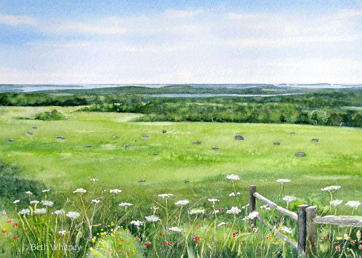 Painting of Caterpillar Hill in Sedgwick, Maine by artist Beth Whitney | DowneastWatercolors.com