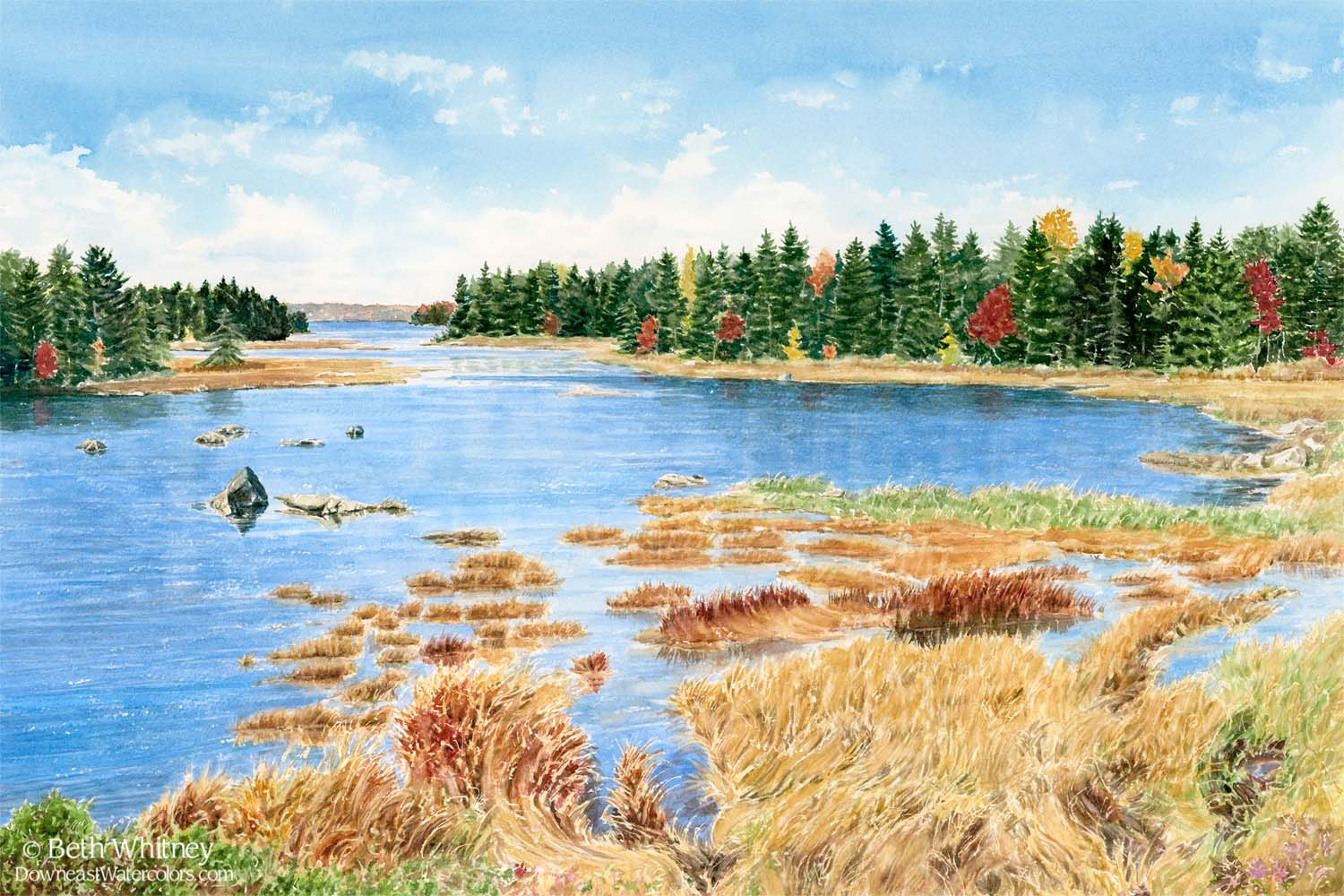 Watercolor painting of golden grasses and blue ocean cove on MDI, Maine